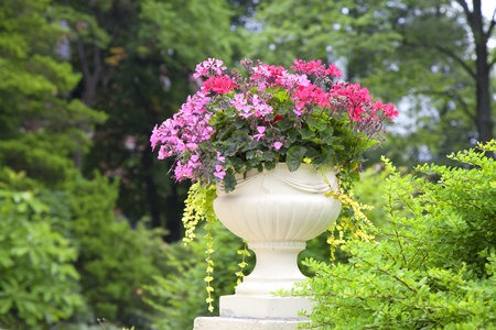 planter: A cement pedestal planter backlit in a summer garden or park setting.