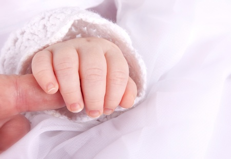 A babys hand clutching the finger of an adult.   photo