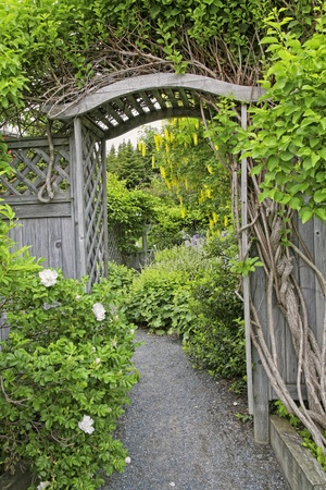 Wooden arbor and fence in a perennial garden or park like setiing.