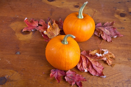 Minature fall pumpkins  with autumn leaves on a wooden table.