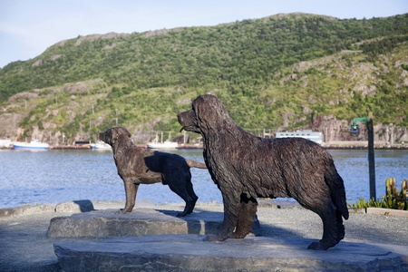 Statues of a Labrador Retriever and a Newfoundland dog located in Harborside Park in St. Johns, Newfoundland, Canada.