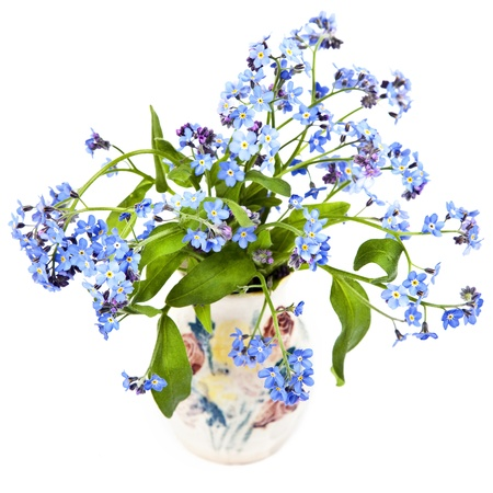 A bouquet of forget-me-nots in a little pottery vase. photo