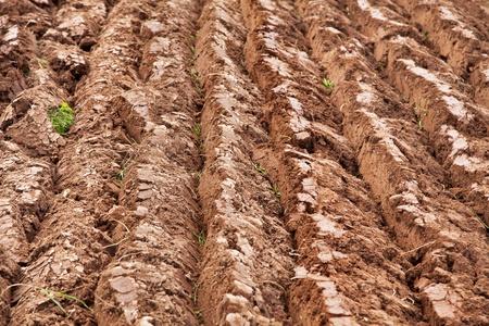plowed: Freshly plowed farmers field. Stock Photo
