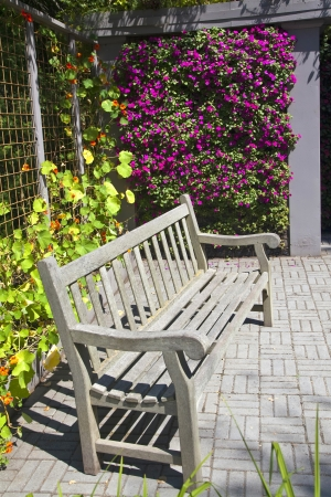 niche: A wooden bench in a colorful garden niche with a profusion of annual flowers such as impatiens and nastursiums.