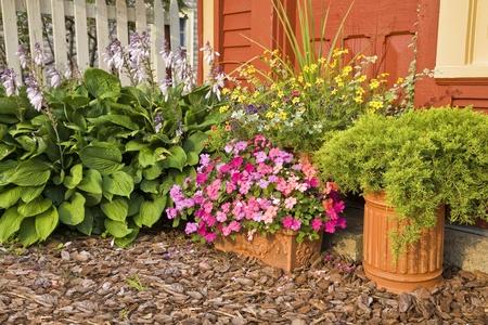 impatiens: Jardineras utilizados en el jard�n de casa de verano lleno de impacientes, enebro y otras flores.
