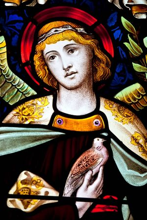 stained glass windows: Detail of a multi colored serene angel in stained glass