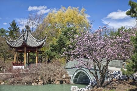 Japanese Garden in the Montreal Botanical Garden, Montreal, Quebec, Canada. Stock Photo - 17176262