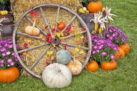Autumn farm display of agriculutural produce and an old wagon wheel.