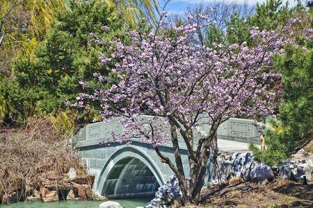 canada agriculture: Japanese Garden in the Montreal Botanical Garden, Montreal, Quebec, Canada. Stock Photo