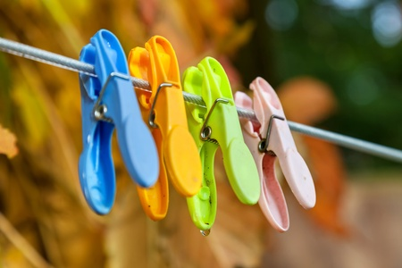 clamped: Plastic clothespins clamped to the clothesline with a background of fall foliage.