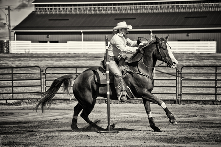 arena rodeo: Western horse and rider competing in pole bending and barrel racing competition. Sepia toning.