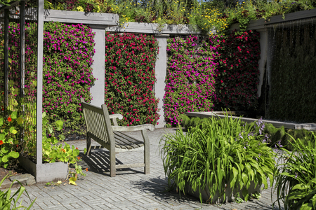 garden bench: A wooden bench in a colorful garden niche with walls of vibrant flowering impatiens.