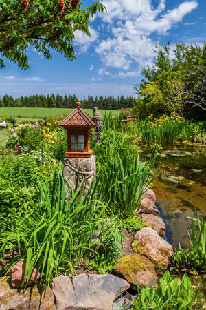statuary garden: Ornamental lantern in an Asian inspired summer garden.