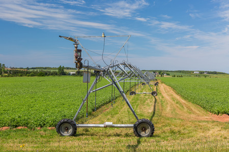 russet: Irrigation equipment known as a pivot sprinkler system, for a potato field in rural Prince Edward Island, Canada.