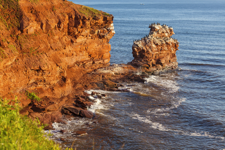 The rocky shore of Prince Edward Island at daybreak illuminating the cliffs and rocks bright red. A colony of cormorants clings to a distant rock stack. photo