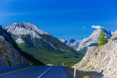 provincial forest parks: View from the Kananaskis area of rural Alberta, Canada.