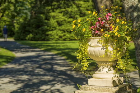 Cement pedestal planter filled with marigolds, begonias and ivy in a summer park.