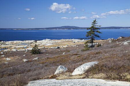 Rocky Nova Scotia shoreline near Peggys Cove.