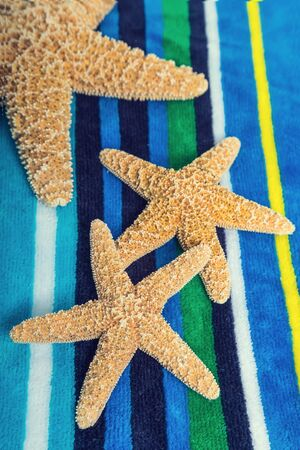 Star fish with a slight vintage effect on a bright striped beach towel.