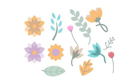 Flower and Leaf Illustration