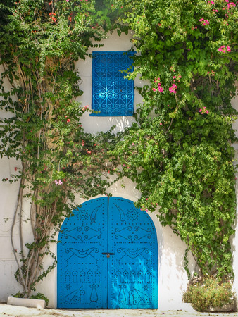Typical blue door surrounded with green plants in the Sidi Bou Said city, Tunisia.