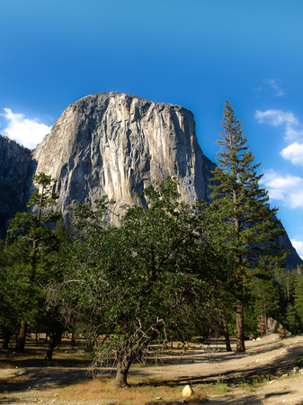 El Capitan rock close-up in Yosemite Valley National Park on sunny morning, California, USA.