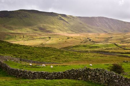 Sheep grazing under the peaks in the Snowdonia National Park in Wales, UK. Stock Photo