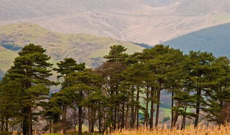 The rugged mountain countryside of Wales in the UK. Stock Photo