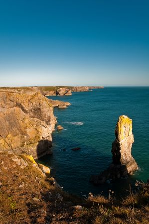 Spectacular limestone stacks, and a haven for seabirds - one of the highlights of the south Pembrokeshire coast, Wales.