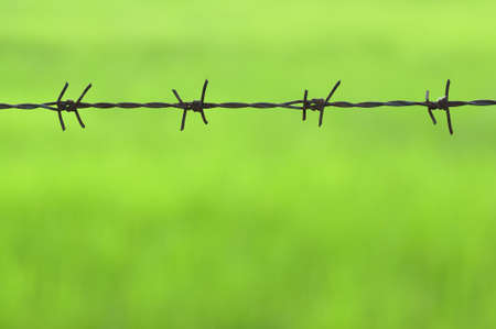 Rusty barb wire on green background photo