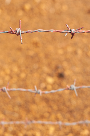 Old barbed wire in orange soil background