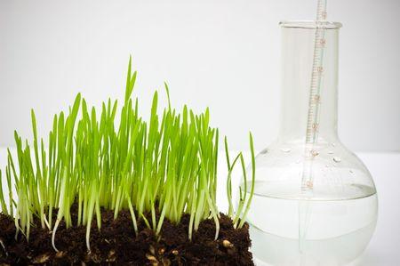 agronomy: ground analyzing