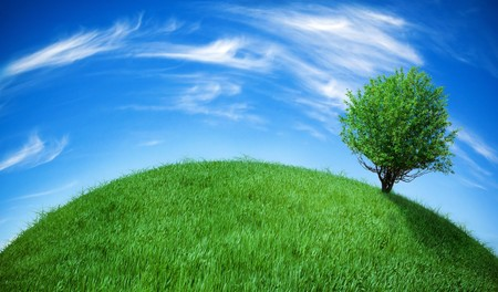 earth globe covered with grass Stock Photo - 4039577