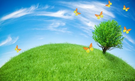 earth globe covered with grass and butterflies flying all around Stock Photo - 4418104