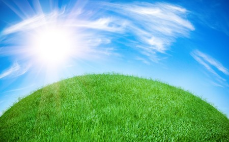 earth globe covered with grass Stock Photo - 4418112