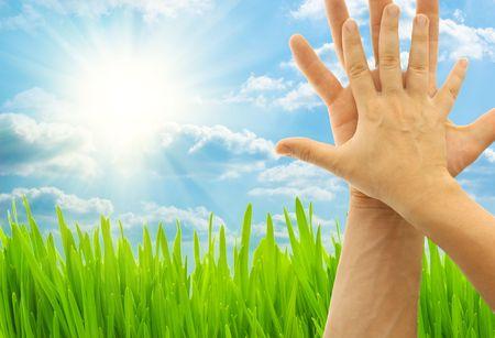 Deux mains sur la nature de fond Banque d'images - 4820154