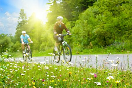 andando en bicicleta: dos motoristas en camino forestal