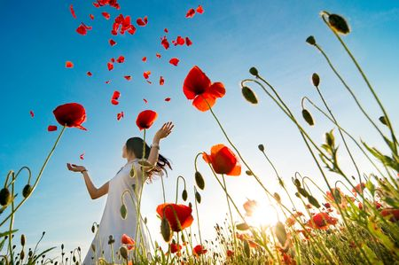 girl stands in poppy field photo