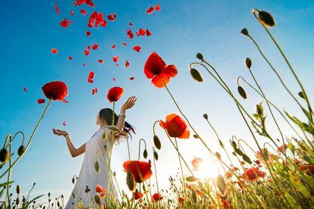 poppy field: meisje staat in klaproos veld