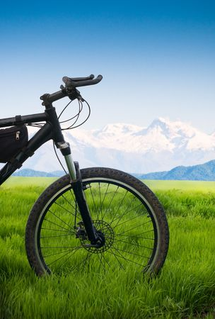 Bicycle in green field tourism concept  photo