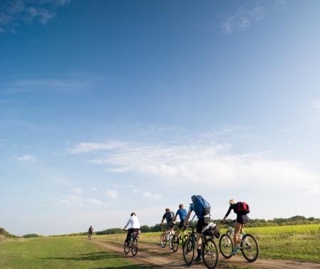 mixed group of cyclists biking summer day Standard-Bild