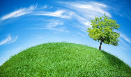 earth globe covered with grass Stock Photo - 6630674
