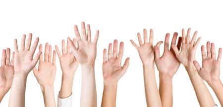 manos humanas aisladas en blanco
