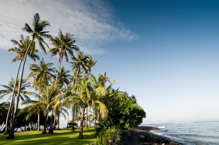 idyllic tropical landscape in Indonesia Standard-Bild