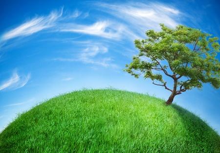 wereldbol bedekt met gras