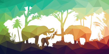 wildlife: animal of wildlife (elephant) Illustration