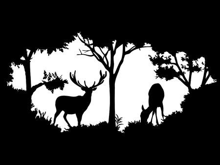 야생의 동물 (사슴)
