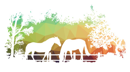 Animal of wildlife (horse) Vector