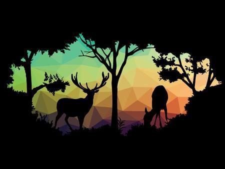 zoologico: animales de la fauna silvestre (ciervos)