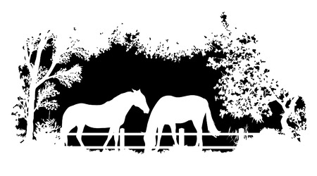 wildlife: Animal of wildlife (horse) Illustration